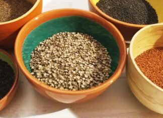 Microgreen seeds in bowls on a table